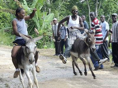 negril-donkey-races-and-fun-day-2013